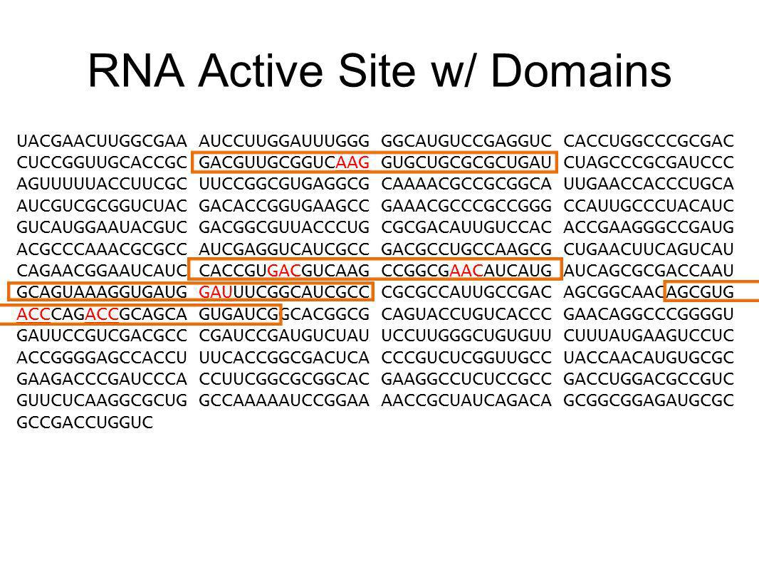 RNA Active Site w/ Domains