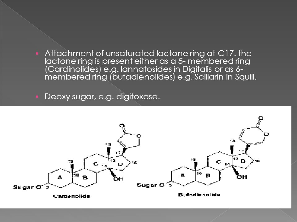 Attachment of unsaturated lactone ring at C17