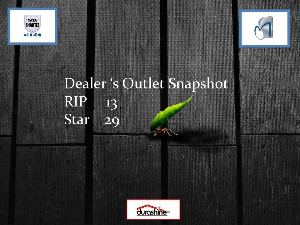Dealer 's Outlet Snapshot