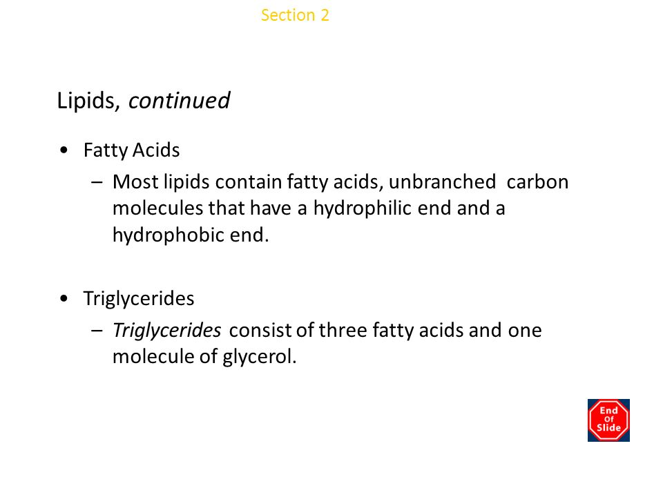 Chapter 3 Lipids, continued Fatty Acids