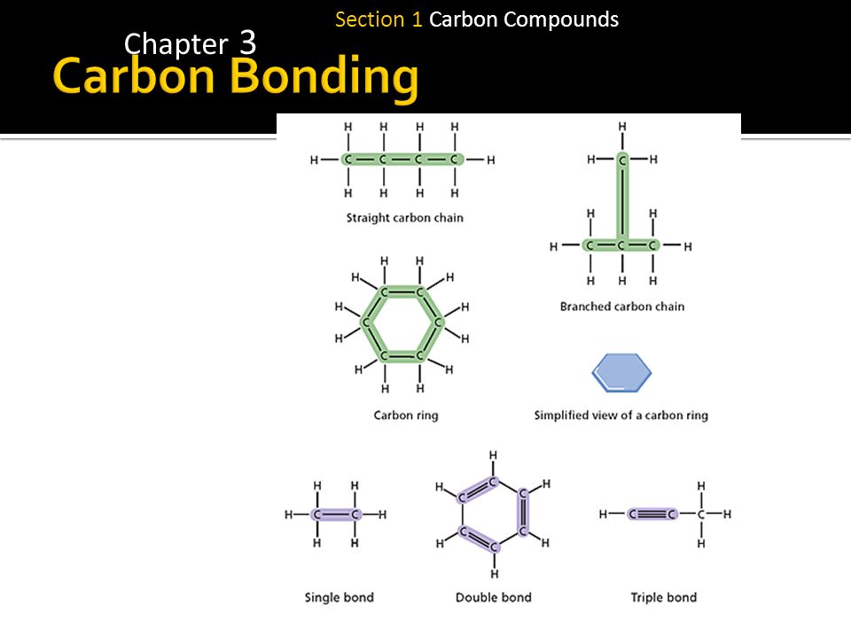 Section 1 Carbon Compounds