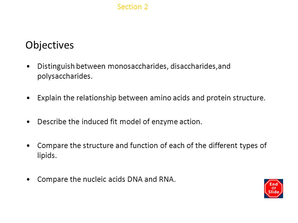 Chapter 3 Objectives Section 2 Molecules of Life
