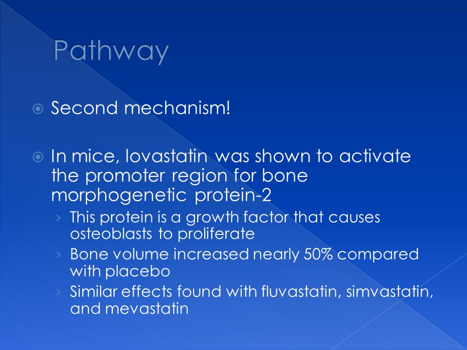 Pathway Second mechanism!