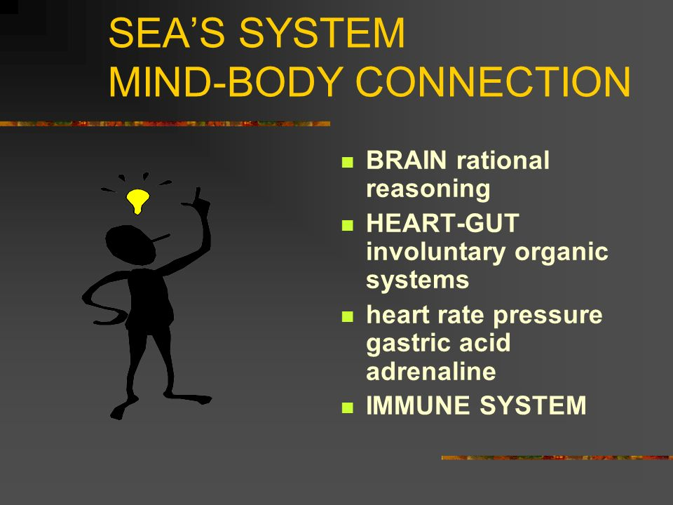 SEA'S SYSTEM MIND-BODY CONNECTION