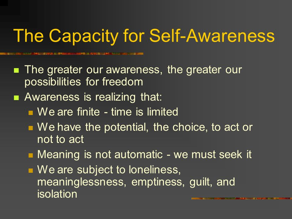 The Capacity for Self-Awareness