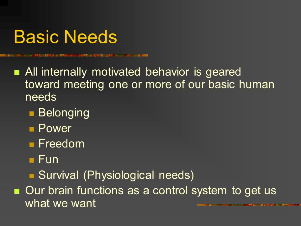 Basic Needs All internally motivated behavior is geared toward meeting one or more of our basic human needs.