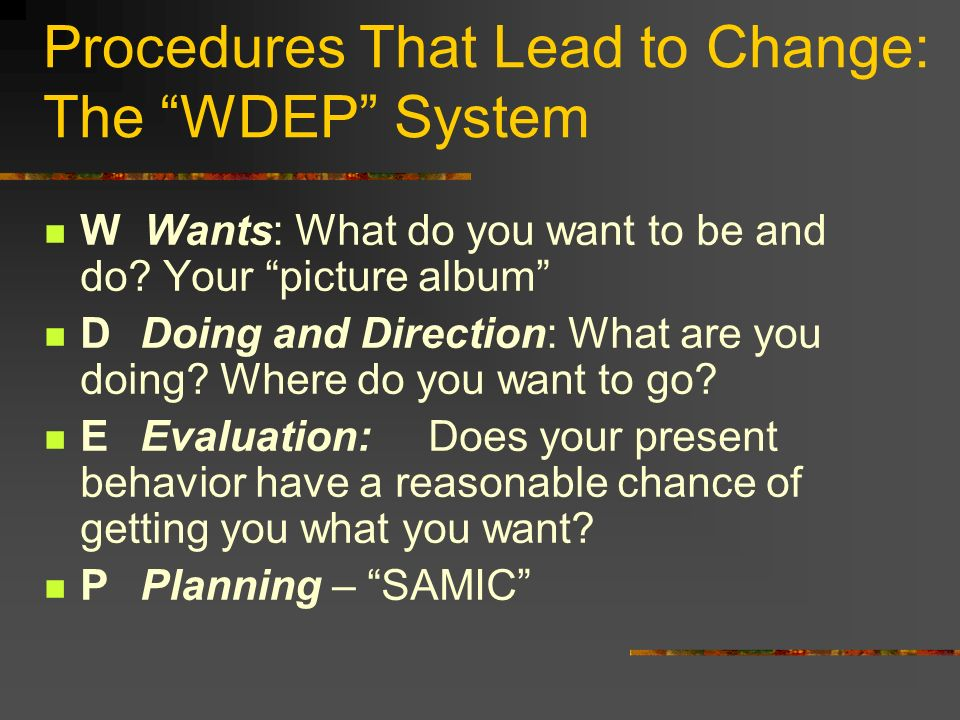 Procedures That Lead to Change: The WDEP System