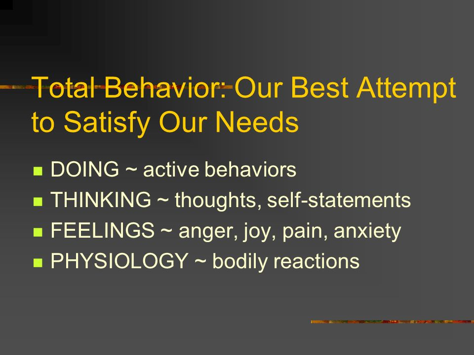 Total Behavior: Our Best Attempt to Satisfy Our Needs