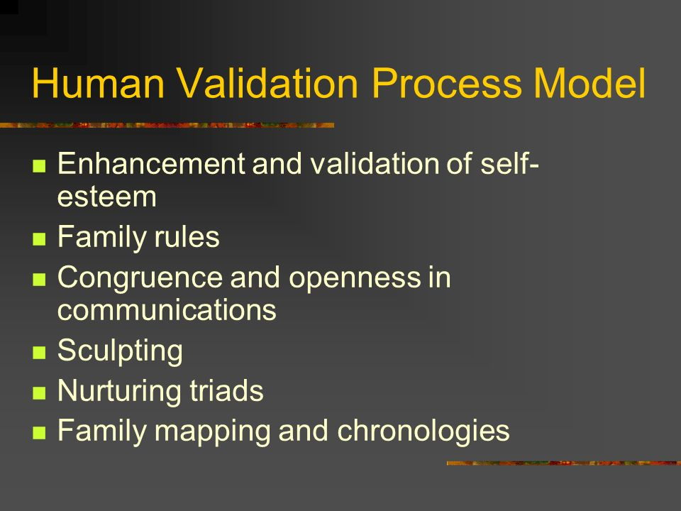 Human Validation Process Model