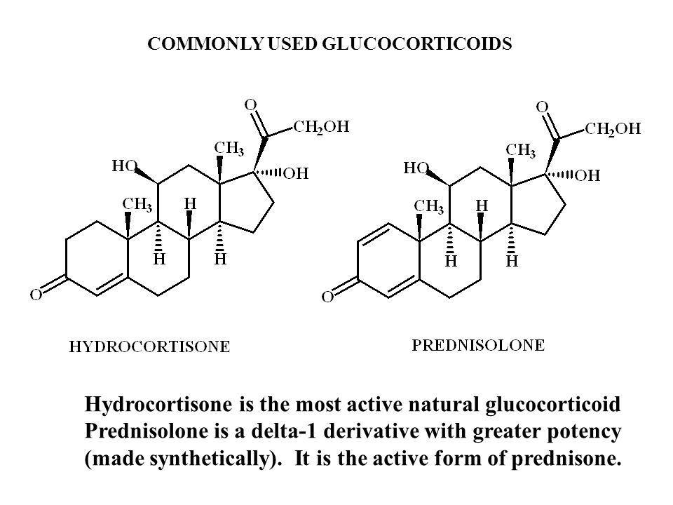 Hydrocortisone is the most active natural glucocorticoid