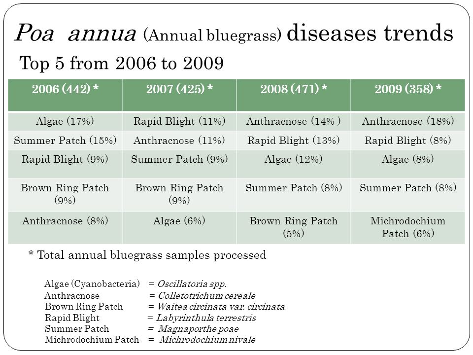 Poa annua (Annual bluegrass) diseases trends Top 5 from 2006 to 2009