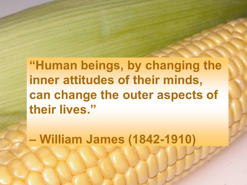 Human beings, by changing the inner attitudes of their minds, can change the outer aspects of their lives. – William James (1842-1910)