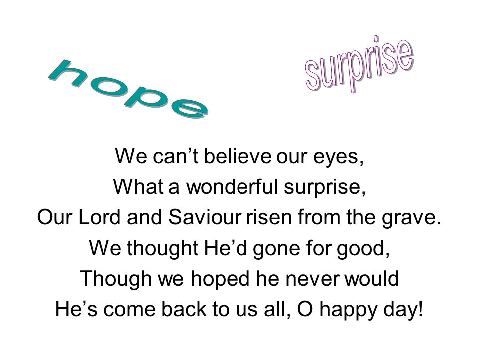 surprise hope We can't believe our eyes, What a wonderful surprise,
