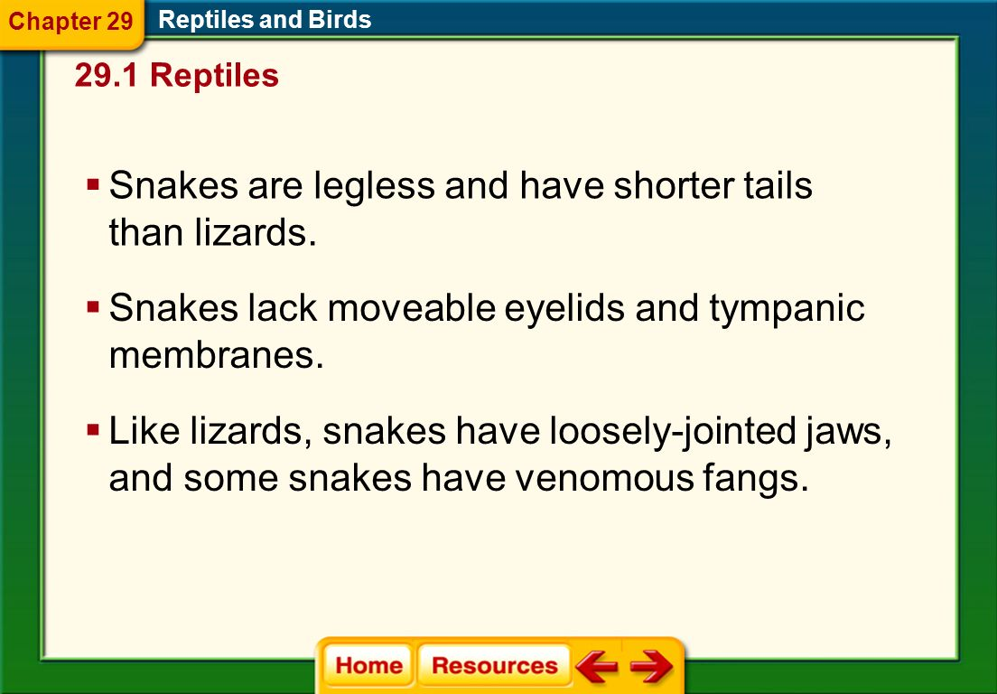Snakes are legless and have shorter tails than lizards.