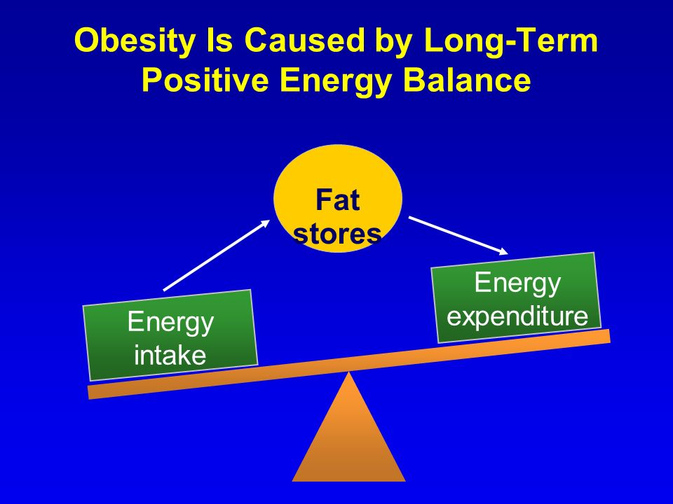 Obesity Is Caused by Long-Term Positive Energy Balance