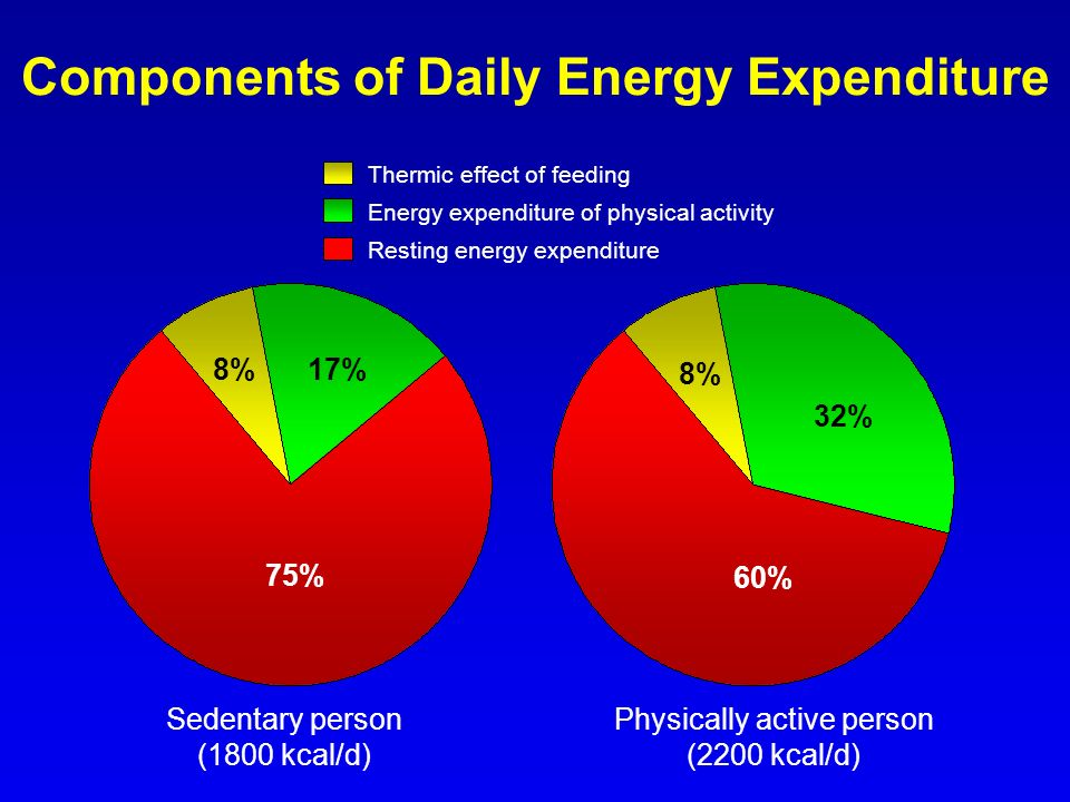 Components of Daily Energy Expenditure