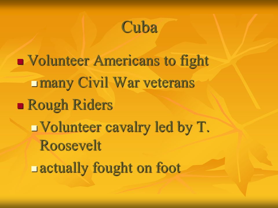 Cuba Volunteer Americans to fight many Civil War veterans Rough Riders