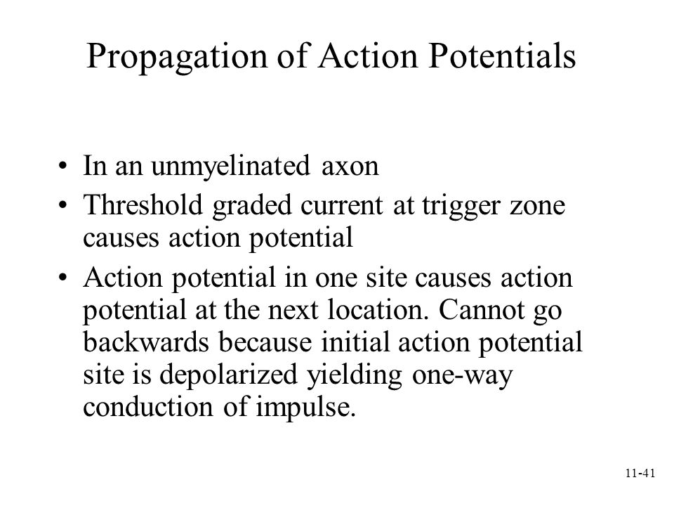 Propagation of Action Potentials