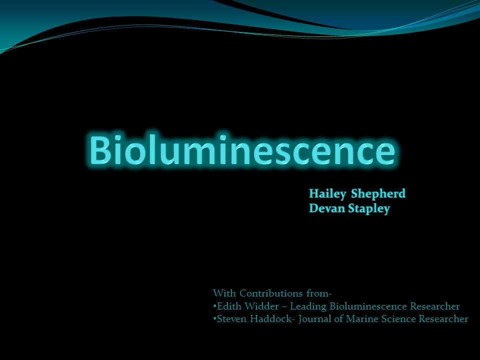 Bioluminescence Hailey Shepherd Devan Stapley With Contributions from-