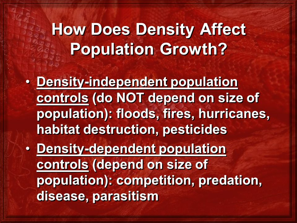 How Does Density Affect Population Growth
