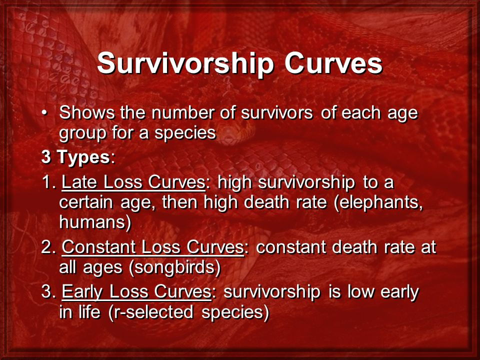 Survivorship Curves Shows the number of survivors of each age group for a species. 3 Types: