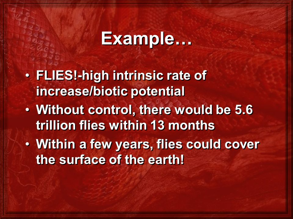 Example… FLIES!-high intrinsic rate of increase/biotic potential