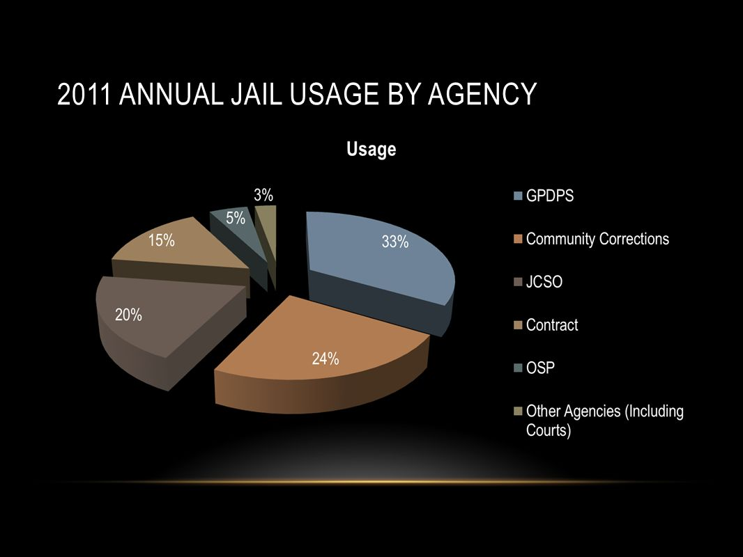 2011 annual jail usage by agency