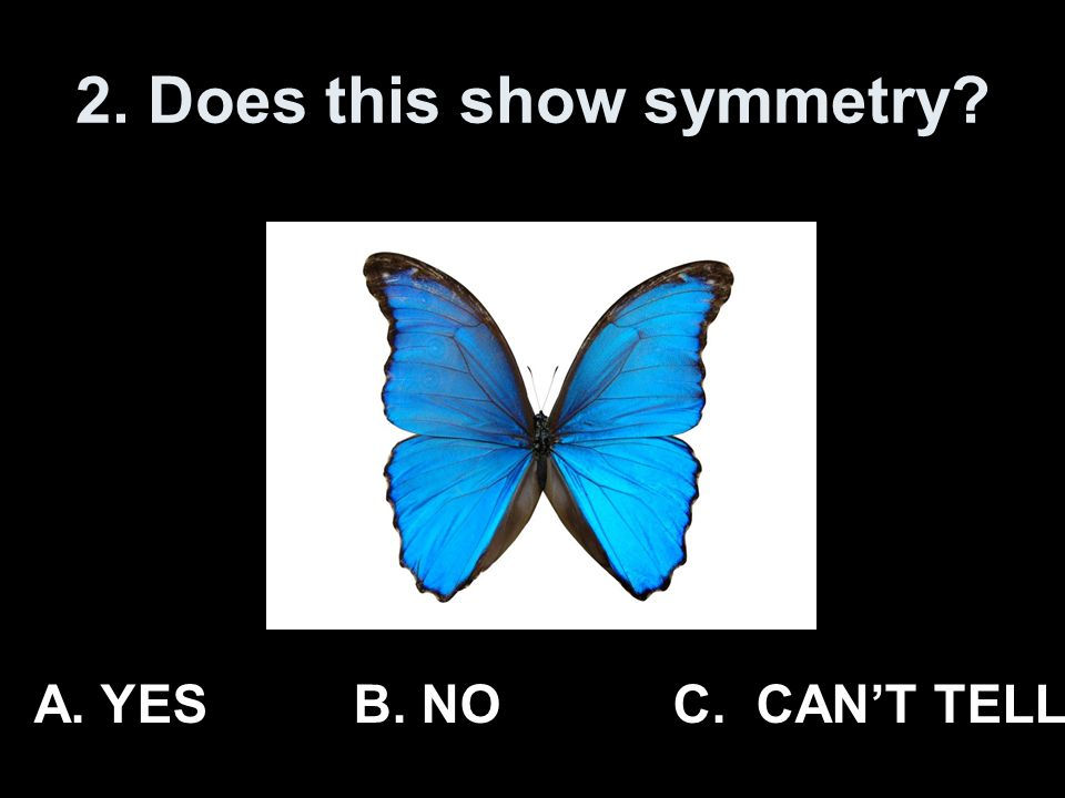 2. Does this show symmetry