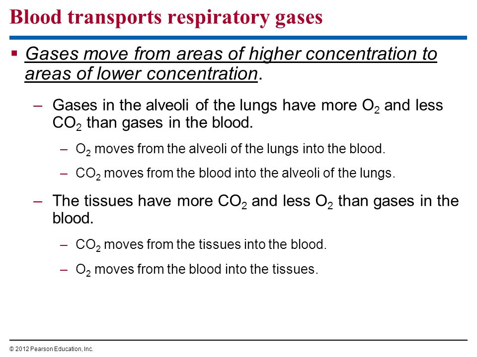 Blood transports respiratory gases