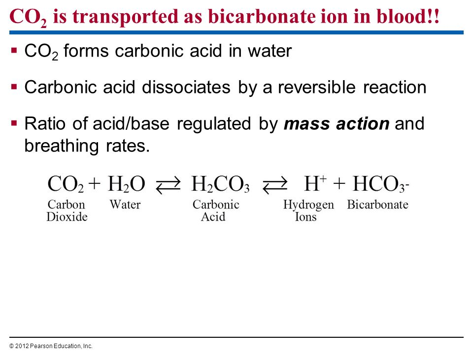 CO2 is transported as bicarbonate ion in blood!!
