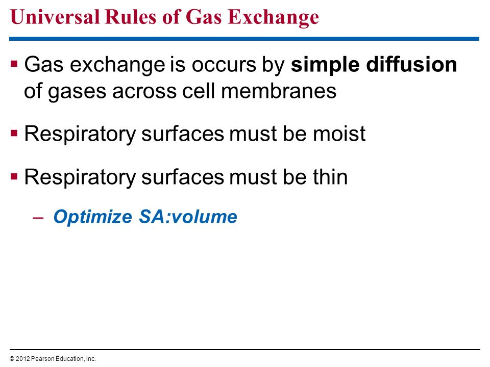 Universal Rules of Gas Exchange
