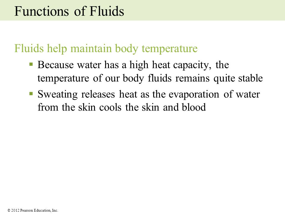 Functions of Fluids Fluids help maintain body temperature