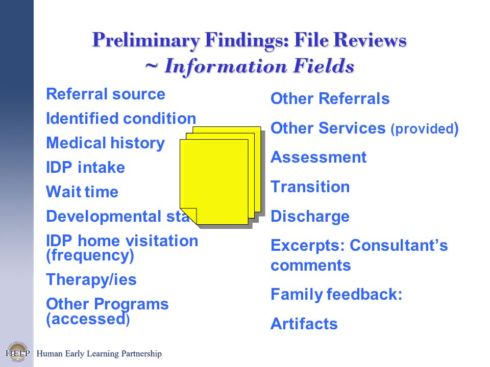 Preliminary Findings: File Reviews ~ Information Fields