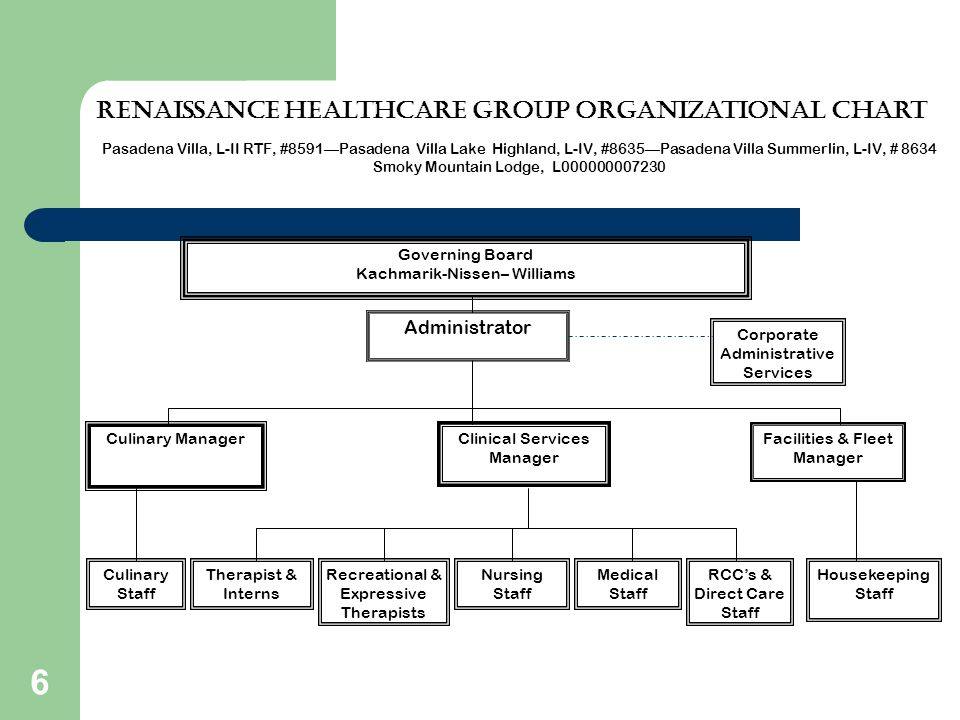 Renaissance Healthcare group organizational chart