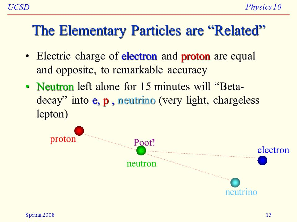 The Elementary Particles are Related