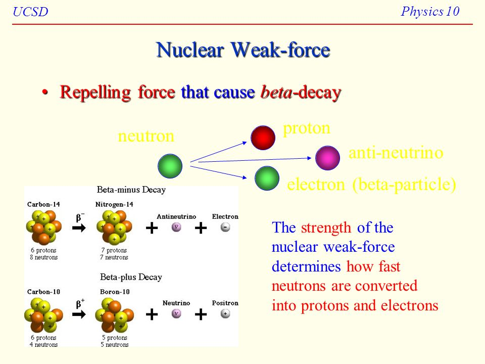 Nuclear Weak-force Repelling force that cause beta-decay proton