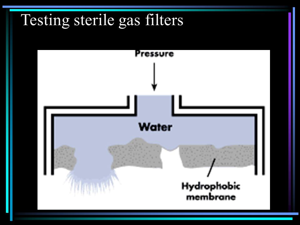 Testing sterile gas filters