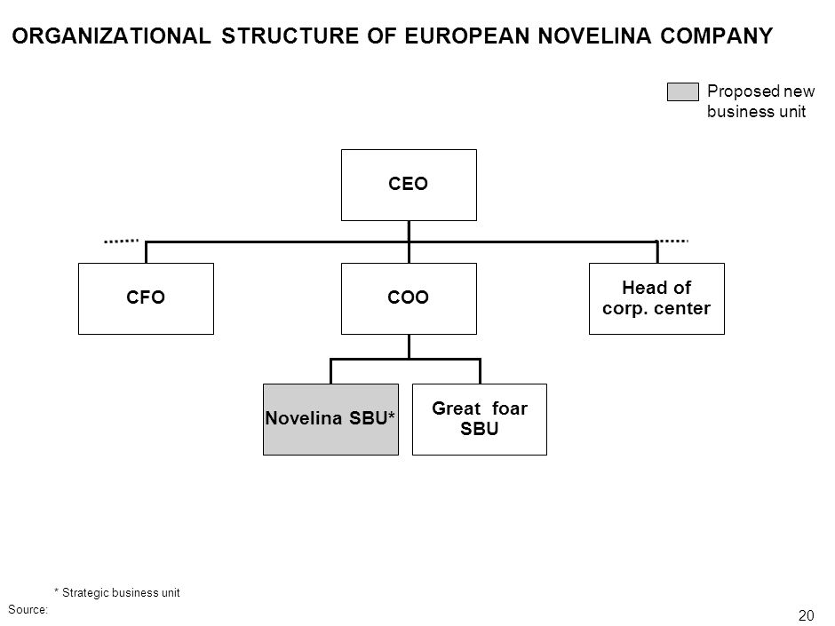 ORGANIZATIONAL STRUCTURE OF EUROPEAN NOVELINA COMPANY