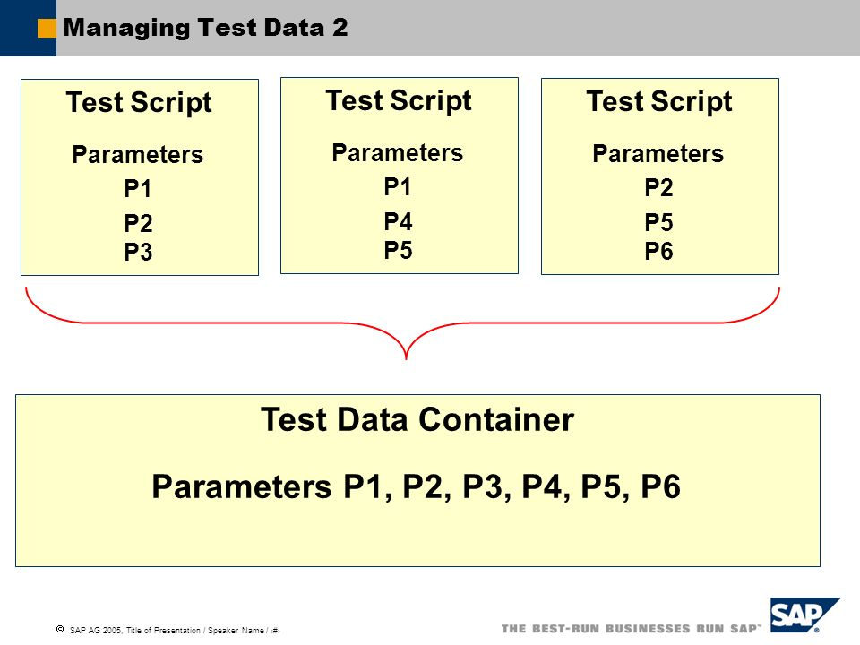 Test Data Container Parameters P1, P2, P3, P4, P5, P6