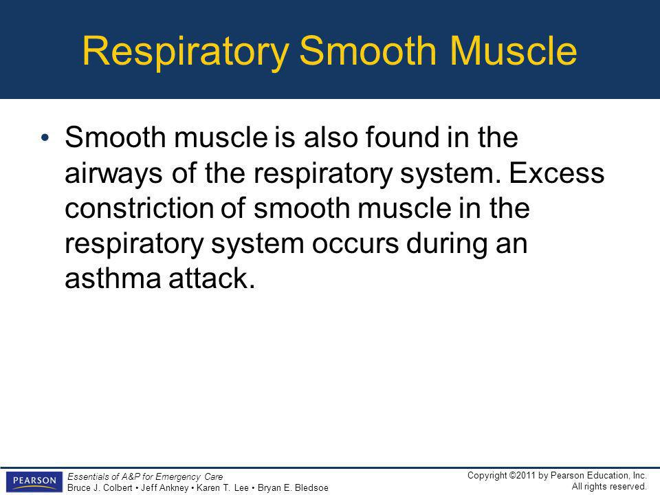 Respiratory Smooth Muscle