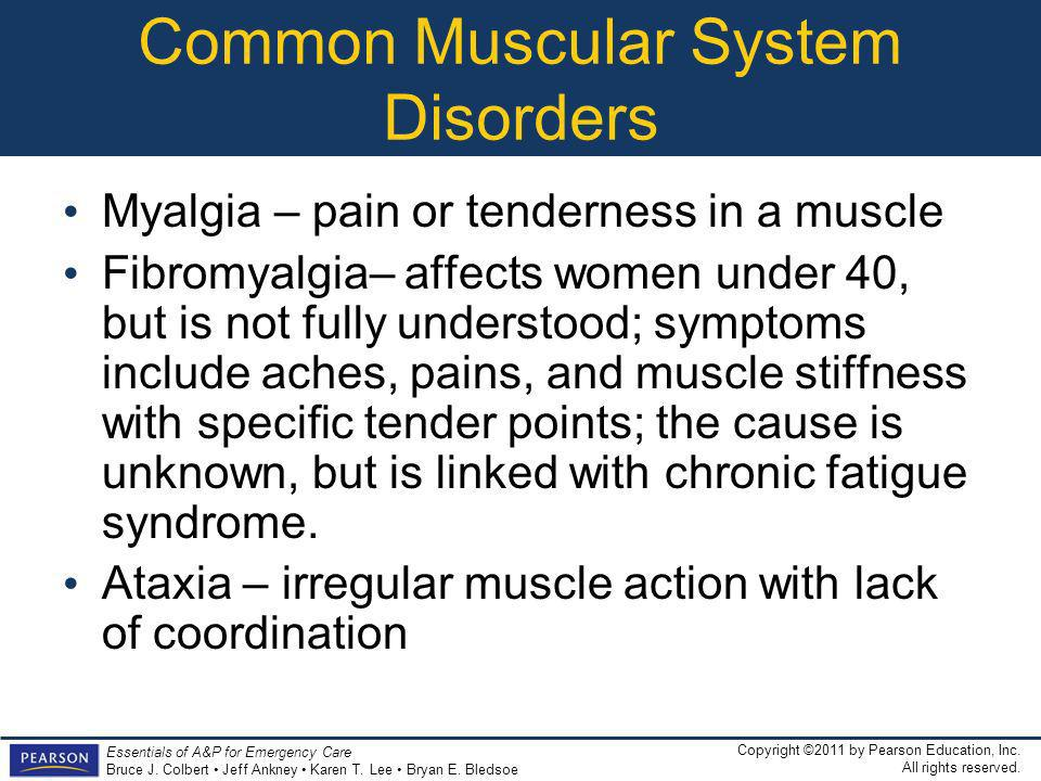 Common Muscular System Disorders