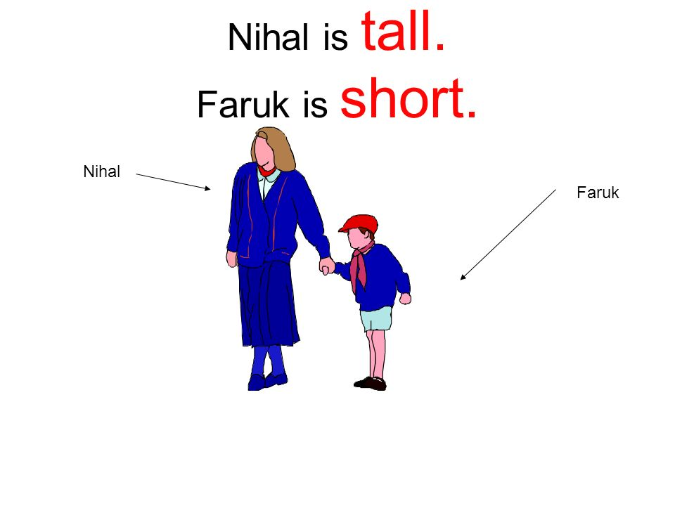 Nihal is tall. Faruk is short.