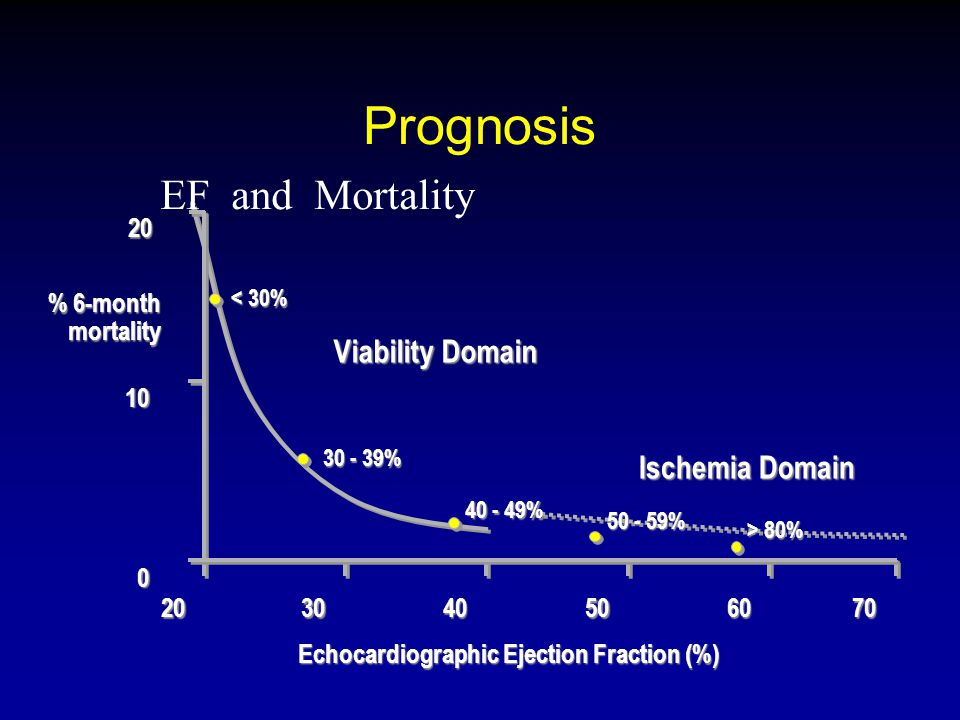Prognosis EF and Mortality Viability Domain Ischemia Domain 20