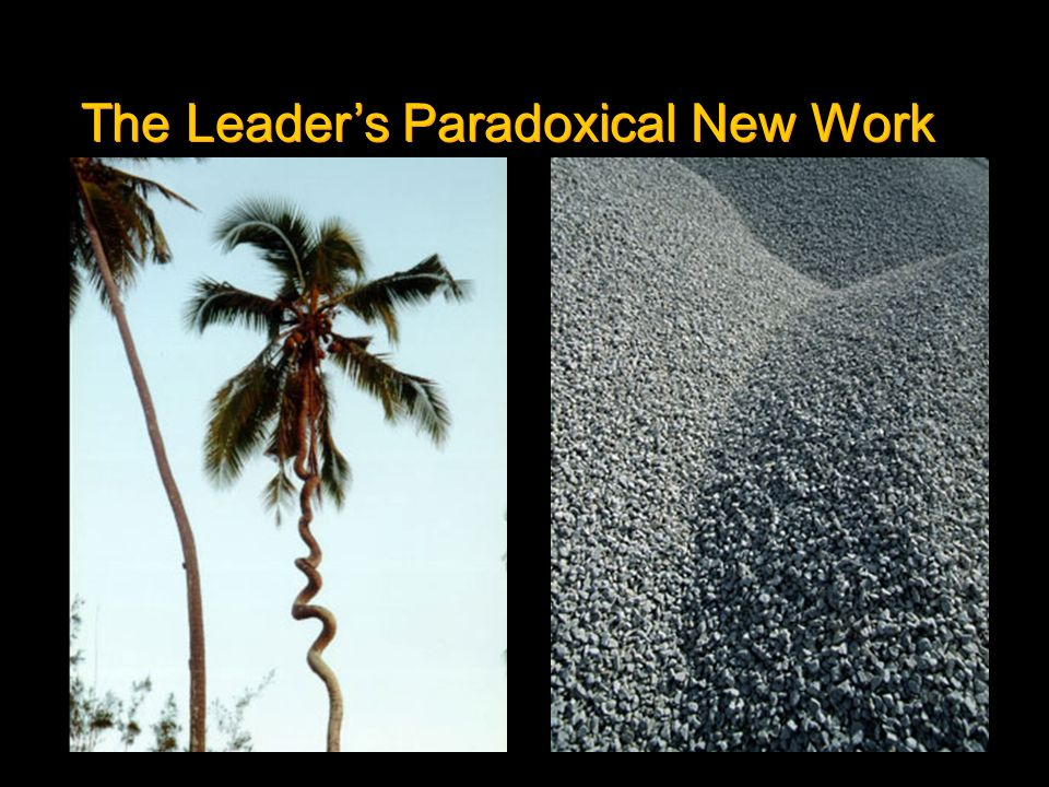 The Leader's Paradoxical New Work