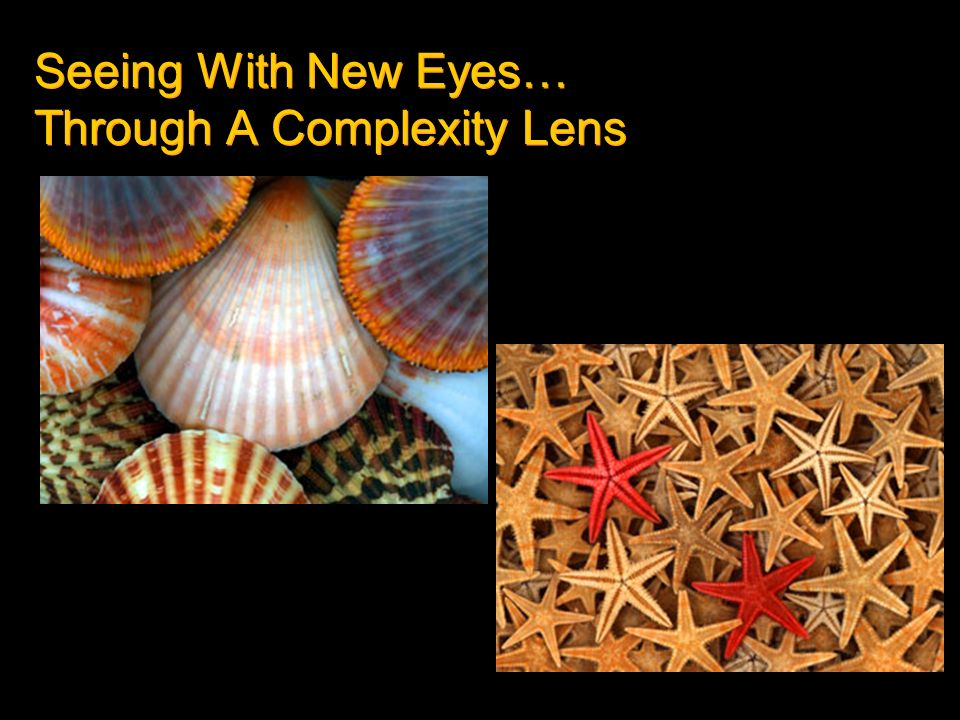 Seeing With New Eyes… Through A Complexity Lens
