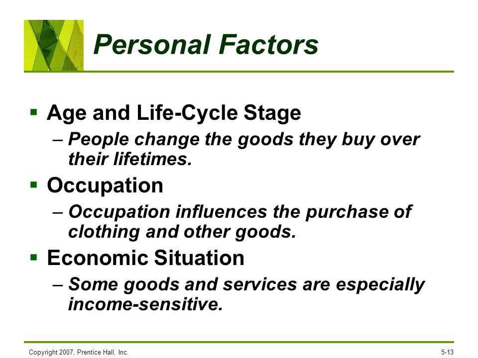 Personal Factors Age and Life-Cycle Stage Occupation