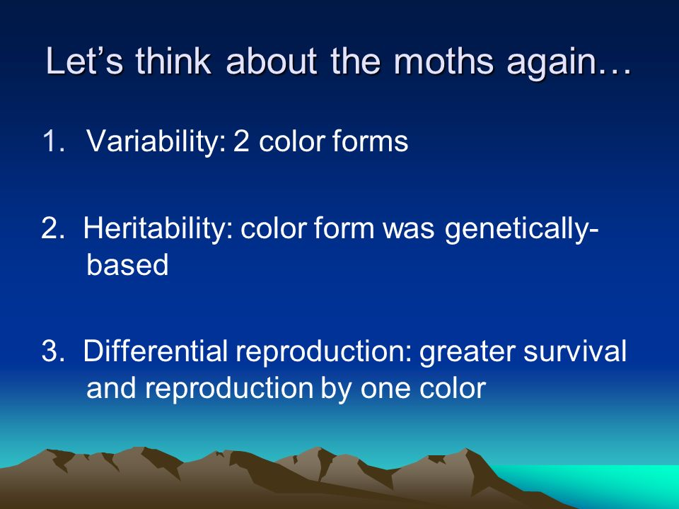 Let's think about the moths again…