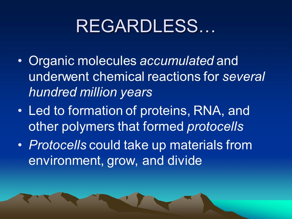 REGARDLESS… Organic molecules accumulated and underwent chemical reactions for several hundred million years.