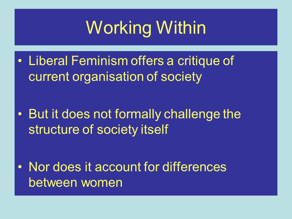 Working Within Liberal Feminism offers a critique of current organisation of society.