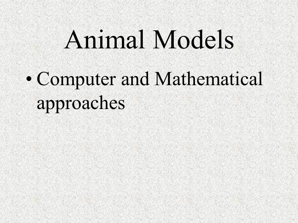 Animal Models Computer and Mathematical approaches
